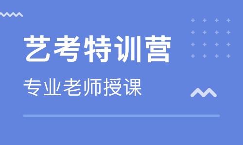 武汉艺考生文化课哪家好,应该